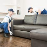 Tampa Furniture Movers